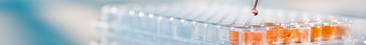 MAb Technologies | Your source for quality monoclonal and polyclonal antibodies